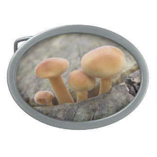 Toadstools on a Tree Trunk Belt Buckle
