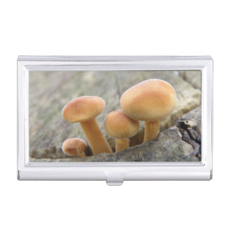 Toadstools on a Tree Trunk Card holder