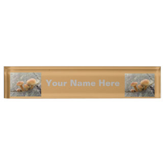 Toadstools on a Tree Trunk Custom Nameplate