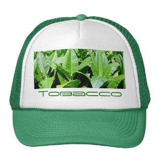 Tobacco field trucker hat