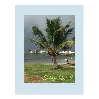 Tobago Postcard