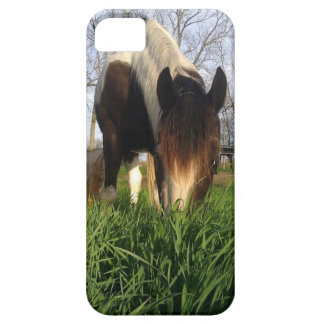 Tobiano Horse in grass Iphone Case