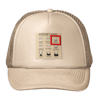 Today I Feel Chaotic Good Trucker Hat