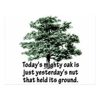 Today's mighty oak is just yesterday's nut that he postcard