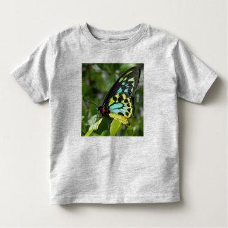 Toddler Butterfly shirt