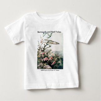 Toddler T / Barracuda and Reef Fishes T-shirts