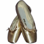 Toe Shoes Ballet Ornament Photo Sculpture Ornament