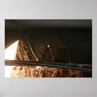 Toile d'araignée en grenier à foin posters
