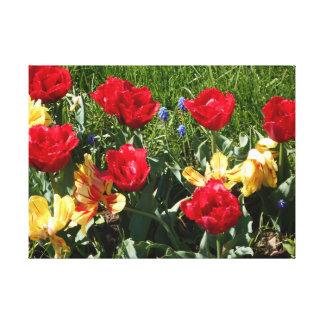 Toile Tulipes rouges et jaunes