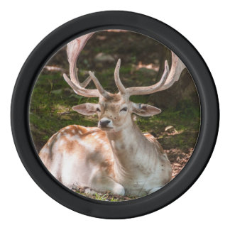 Token of poker photo stag under wood