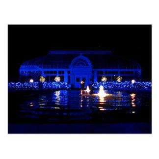 Toledo Zoo Lights (Conservatory) Postcard