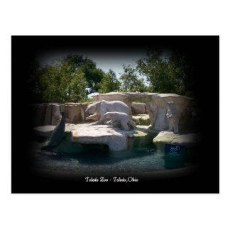 Toledo Zoo Polar Bear Statue Postcard
