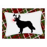 Toller Reindeer Christmas Card