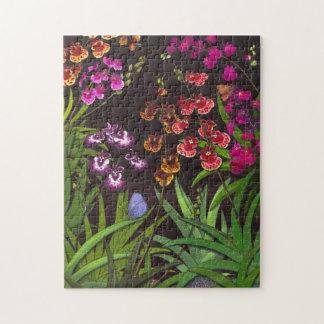 Tolumnia Equitant Oncidium Orchids Puzzle
