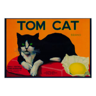 Tom Cat Lemon LabelOrosi, CA Poster