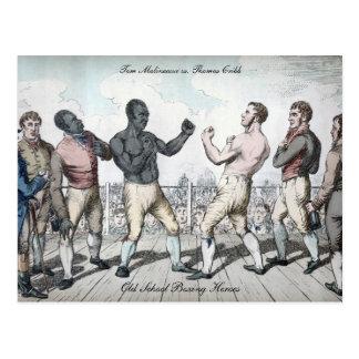 Tom Cribb vs. Thomas Molineaux Postcard