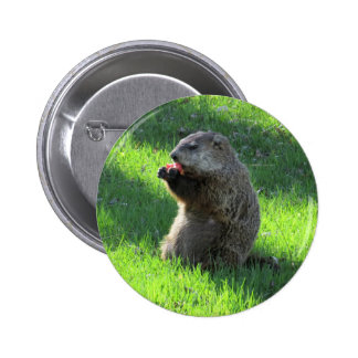 Tomato Groundhog 2 Inch Round Button