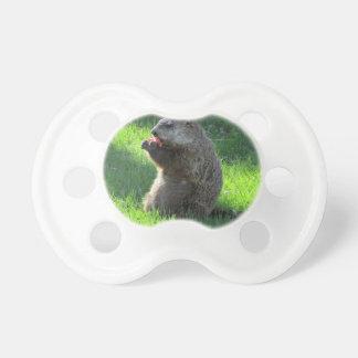 Tomato Groundhog Pacifier