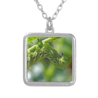 Tomato Hornworm Silver Plated Necklace