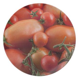 Tomato Mix Plate