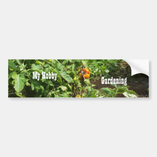 Tomato Patch Bumper Sticker