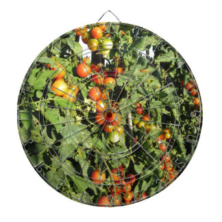 Tomato plants growing in the garden dartboard