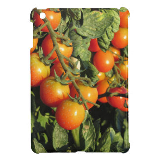 Tomato plants growing in the garden iPad mini covers