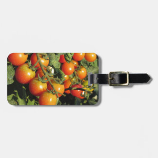 Tomato plants growing in the garden luggage tag