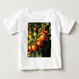 Tomato plants growing in the garden . Tuscany Baby T-Shirt