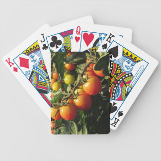 Tomato plants growing in the garden . Tuscany Bicycle Playing Cards