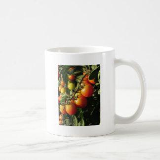 Tomato plants growing in the garden . Tuscany Coffee Mug