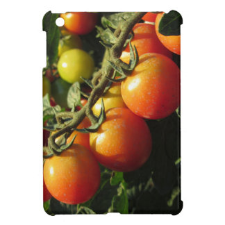 Tomato plants growing in the garden . Tuscany iPad Mini Cover