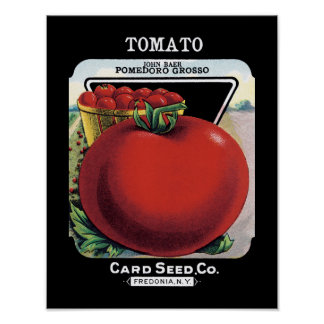 Tomato Seed Packet Label Poster