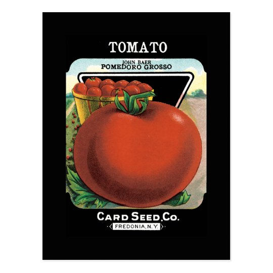 Tomato Seed Packet Postcard