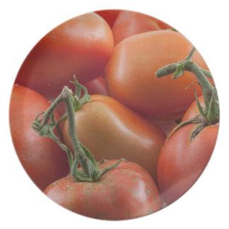 Tomato Stems Plate