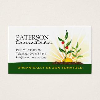 Tomatoe Farmer Business Card