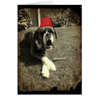 Tommy Cooper Boxer Dog Card