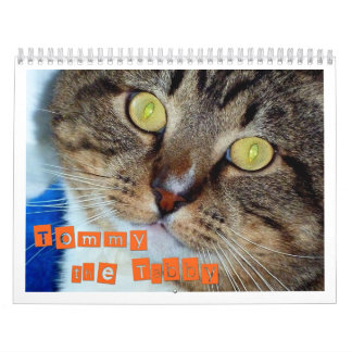 Tommy the Tabby Wall Calendars