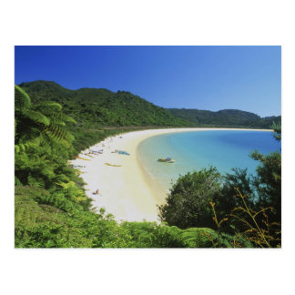Tonga Bay, Abel Tasman NP, South Island, New Postcard