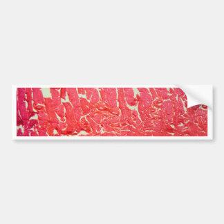 Tongue Cells under the Microscope Bumper Sticker