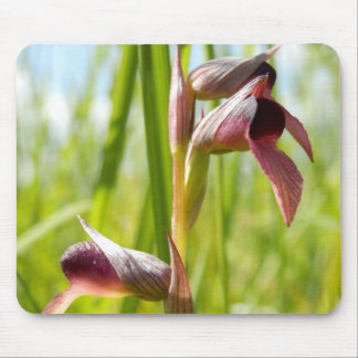 Tongue Orchid Mouse Mat Mouse Pad