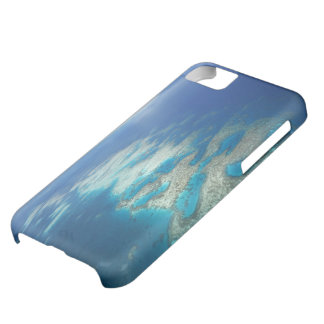 Tongue Reef, Great Barrier Reef Marine Park, iPhone 5C Case
