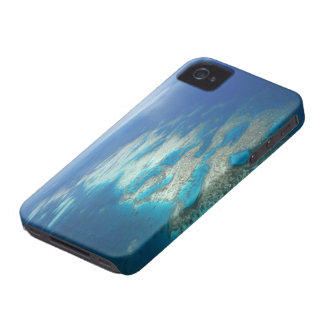 Tongue Reef, Great Barrier Reef Marine Park, iPhone 4 Case-Mate Cases