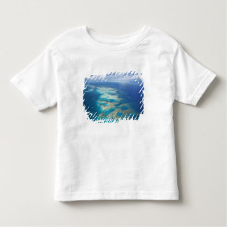 Tongue Reef, Great Barrier Reef Marine Park, Toddler T-shirt