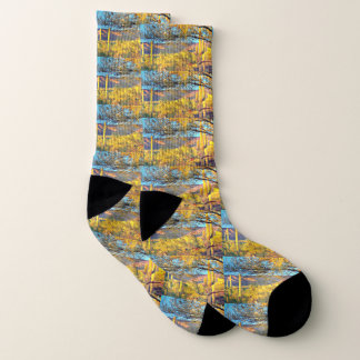 Tonto Mountains in Orion Unisex Socks 1