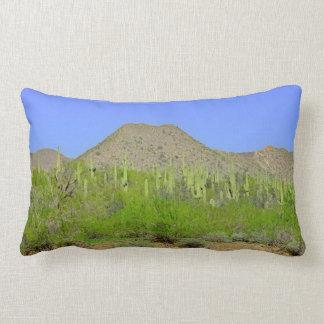 Tontos In Orion Poly Lumbar Pillow