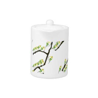tony fernandes sakura and green birds