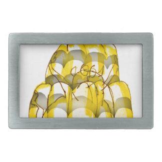 tony fernandes's honey bee jello belt buckle