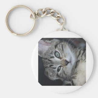 Too Cute Kitty! Keychain