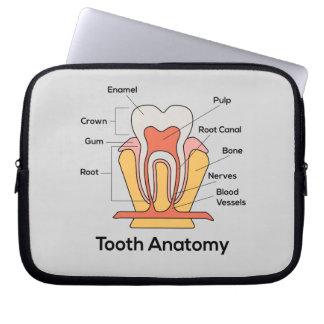 Tooth Anatomy Chart Laptop Sleeve